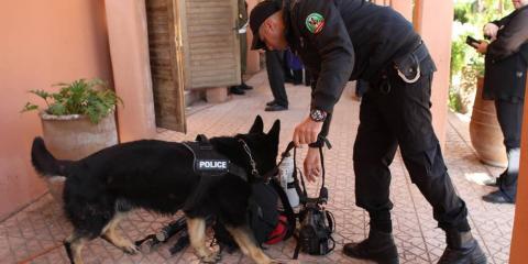 """TUNISIE:  Le """"cerveau"""" du récent double attentat"""